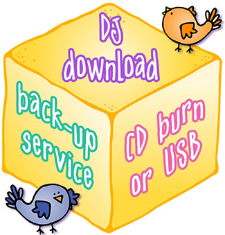 Download Back-Up Service - CD Burn or USB Flash Drive